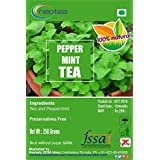 NEOTEA GREEN TEA WITH PEPPER MINT 400 GRAM 4 PACK