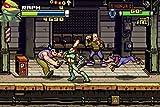 Teenage Mutant Ninja Turtles / Game