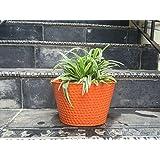 The Garden Store Oval Tin Pot -orange
