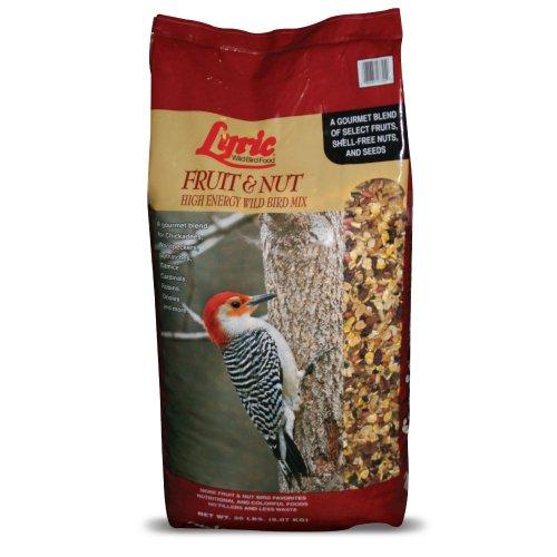 Lyric Fruit & Nut High Energy Wild Bird Mix - 20 lb. bag