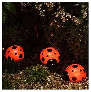 Solar ladybird lights