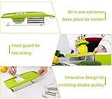 5 in 1 Kompakter Gemüsehobel Mandoline Slicer - Schneiden oder Zerteilen Gemüse Obst sSchnell und gleichmäßig - Best Gemüseschneider Slicer mit 5 verschiedenen Qualitäts Edelstahl Klingen, iParaAiluRy -