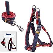 ARIKON Adjustable And Heavy Duty Denim Dog Training Walking Leash Collar For Medium/Small Dog