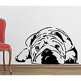 Decal Style Pug Looks Sad Wall Sticker Medium Size-25*14 Inch