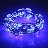 NEWSTYLE 33Ft 10M 100 LED Lights Strings 100 LEDs With Anise Flower On Copper Wire 33ft LED Starry Light With...