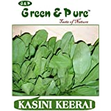 Green & Pure - High Yield Organic Vegetable Seeds - Kasini Keerai - Pack Of 3 For Kitchen / Terrace / Home Garden