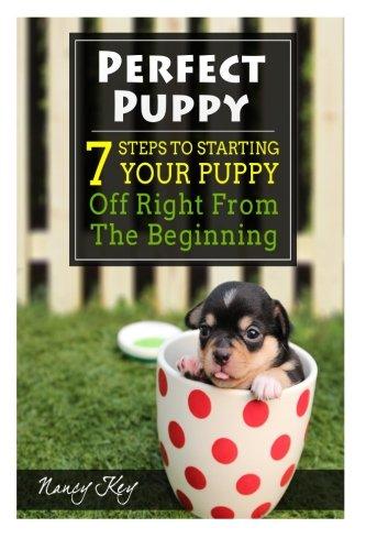 51DHLP%2ByFHL - Basic Dog Training Tips For Beginners