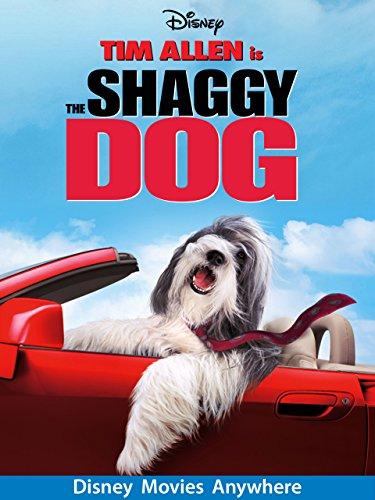 Amazon.com: The Shaggy Dog (2006): Tim Allen, Kristin
