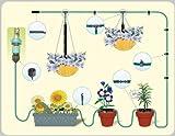 Mini-Bewässerungs-System für Balkon, Terrasse & Gewächshaus