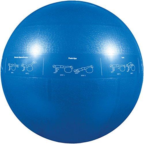 GoFit Professional Grade Core Stability Ball