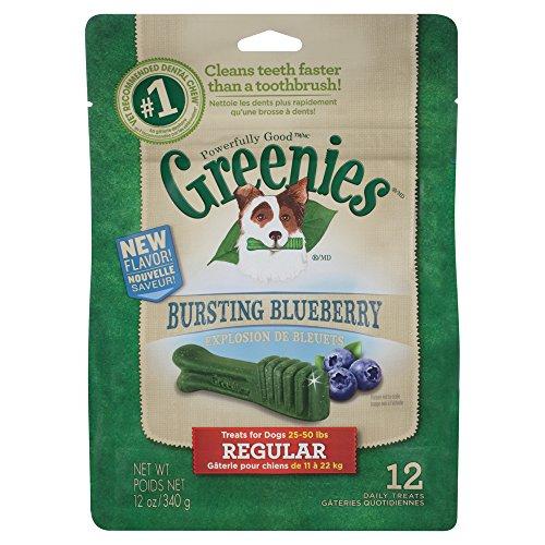 GREENIES® Bursting Blueberry Treat-Pak™ - REGULAR