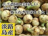 名手農園 淡路島産 新たまねぎ 2016年産  5kg(15?20個) 期間限定サービス価格で販売中!