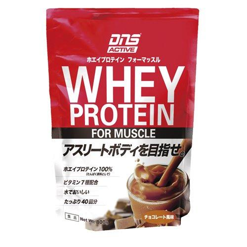 DNS アクティブホエイプロテイン チョコレート風味 800g