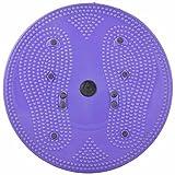 Aarogya Mandir Body Weight Reducer Twister (Assorted)