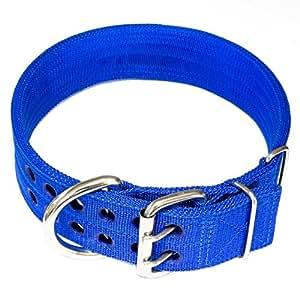 Amazon.com : Pitbull Collar, Dog Collar for Large Dogs