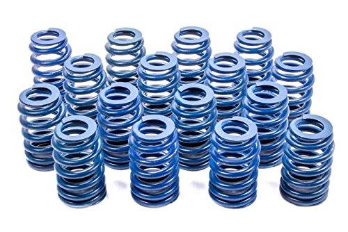 GM Parts 12499224 Valve Spring for LS1 Engine