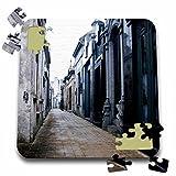 Danita Delimont - Graveyards - Buenos Aires, Argentina, Ricoleta, Evitas graveyard - SA01 MWR0027 - Micah Wright - 10x10 Inch Puzzle (pzl_85443_2)