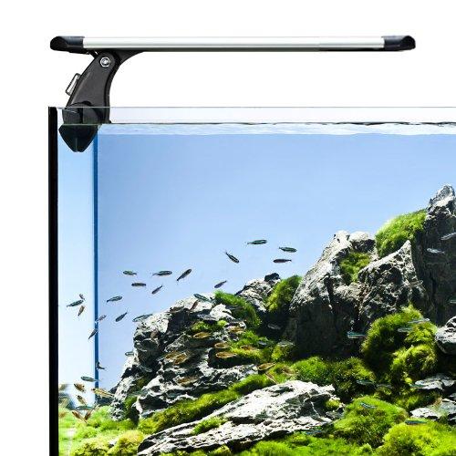 die optimale aquarium beleuchtung nanoquarium. Black Bedroom Furniture Sets. Home Design Ideas