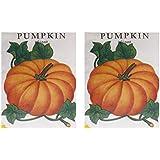 Naga Agency Pumpkin Seeds Combo Pack (Off-White, Pack Of 2 X 50 Grams)