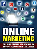 Internet Marketing: Business: Online Marketing (Online Business Lead Generation Home Based Business) (Online Marketing Internet Marketing Entrepreneurship)