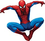 RoomMates RMK1078GSCS Amazing Spiderman Stick Peel & Giant Wall Decal