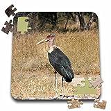 Angelique Cajam Safari Birds - South African Marabous Stork - 10x10 Inch Puzzle (pzl_20129_2)