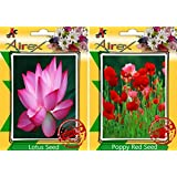 Airex Lotus And Poppy Red Flower Seeds ( Pack Of 30 Seeds Per Packet)