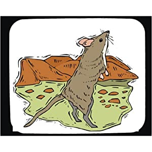 Decorated Mouse Pad with brown, whiskers, rat, mouse, rodent