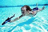 SwimWays Dive 'N Glide Shark