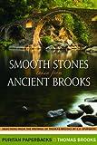 Smooth Stones taken from Ancient Brooks (Puritan Paperbacks)