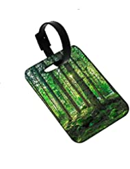 Snoogg Tall Tress With No Leaves Designer Luggage Tags Premium Quality Card Tags - Great For Travel