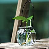 Zakka Pumpkin Sharp Glass Flower Vase Water Planting Hanging Bottle For Garden Decoration Glass Vase
