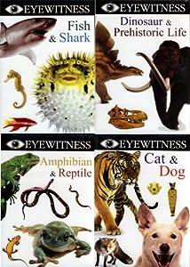 Amazon.com: Eyewitness - Dinosaur & Prehistoric Life/Fish