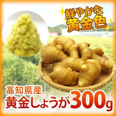 坂田信夫商店 高知県産 黄金生姜(こがねしょうが) 300g