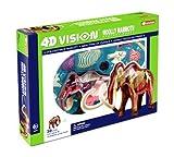 4d Vision Woolly Mammoth Anatomy Model Kit