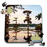 Danita Delimont - Alison Jones - Trees - USA, Louisiana, Atchafalaya Basin. Bald cypress, Lake Martin at sunset - 10x10 Inch Puzzle (pzl_189363_2)