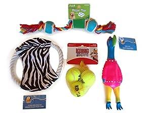 Pet Supplies : Super Pet Premium Dog Toy Variety Pack, (3