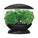 Miracle-Gro AeroGarden 7 Indoor Garden with Gourmet Herb Seed Kit