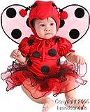 Cute Baby Ladybug Costume (6M)