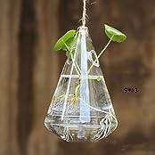 Gardening Supplies Hanging Glass Flower Planter Vase Home Garden Ball Decor(9 X 13cm)