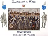 A Call To Arms 1/32 Napoleonic Waterloo Belgian I by A Call To Arms
