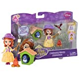 Buttercup Troop Adventure Disney 'Sofia The First' Gift Set: #33 Be A Team Player