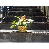 The Garden Store Tin Planter Small Yellow Set Of 3