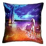 Fashion Home Decorative Cushion Cover Set Of 2 - B00NQ4JNSW