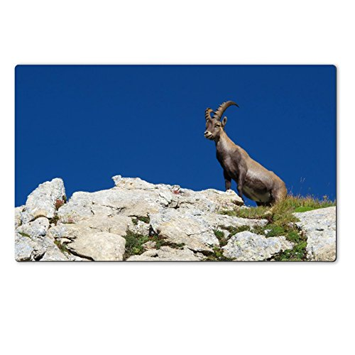 Liili Premium Large Table Mat 28.4 x 17.7 x 0.2 inches Cute young alpine ibex standing on a rock Image ID 21733641