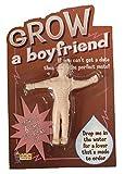 GROW a Boyfriend Novelty Gift