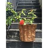 The Garden Store Terracotta Bamboo Shape Planter