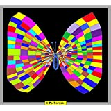The Butterfly Colours 02 Canvas-Large ( 44 In X 39 In )