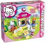 Big 57012 Hello Kitty Bricks Big Bloxx Ponystable Unico set with 41 pieces by BIG Spielwarenfabrik