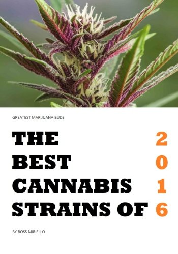 Greatest Marijuana Buds: The Best Cannabis Strains of 2016